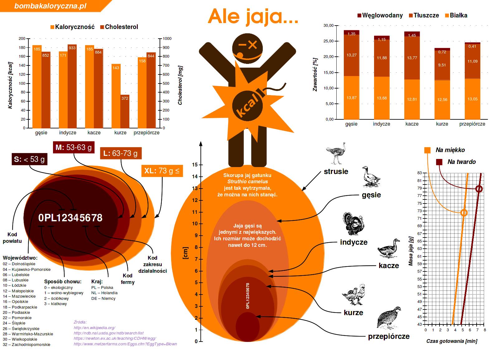Jaja —infografika —wszystko ojajkach