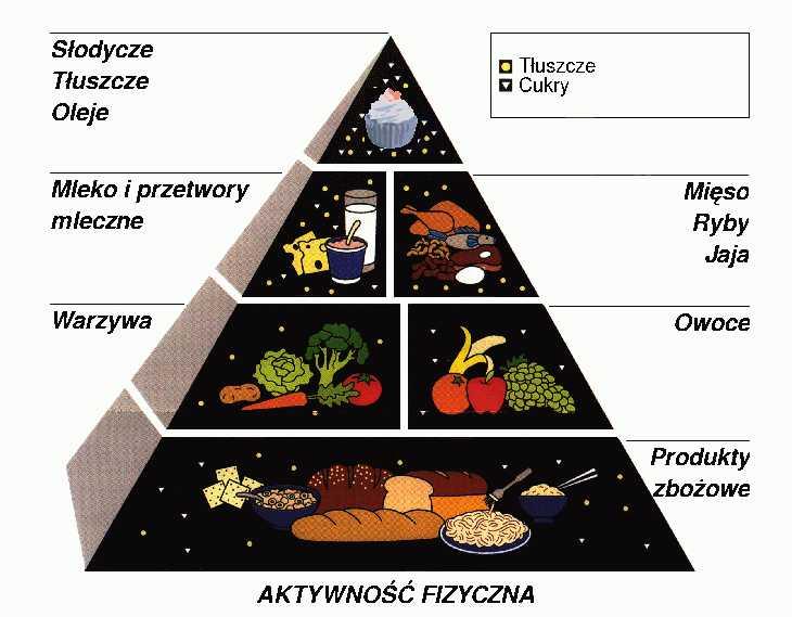 Piramida zywieniowa