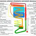 Schemat chłodziarki absorpcyjnej